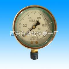 抗震耐震压力表