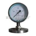 耐酸壓力表,耐腐蝕壓力表