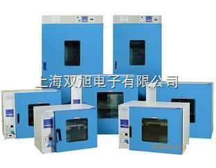 101-AB-2電熱鼓風干燥箱101-AB-2