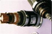 铜带绕包铜丝编织双重屏蔽变频器用回路电缆