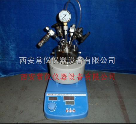 200ml微型磁力高压反应釜