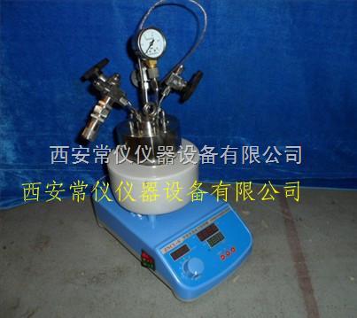 100ml微型磁力高压反应釜