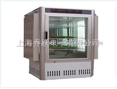 PRX-1200B人工气候箱厂家