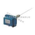 廠家供應 【UYB-2000P射頻電容式液位計】電容式液位計