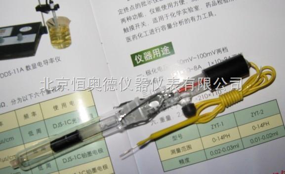 H-217/218/232-飽和甘汞電極