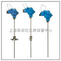 铠装铂电阻 WZPK-124S WZPK2-124S