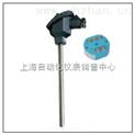 一體化溫度變送器 SBWR-4180/131 SBWR-4180/130