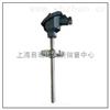耐磨熱電阻 WZCN-430 WZCN2-430