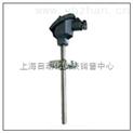 耐磨热电阻 WZCN-430 WZCN2-430