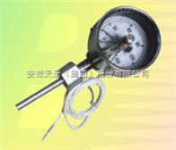 WSSE-401带热电偶/热电阻双金属温度计WSSE-401