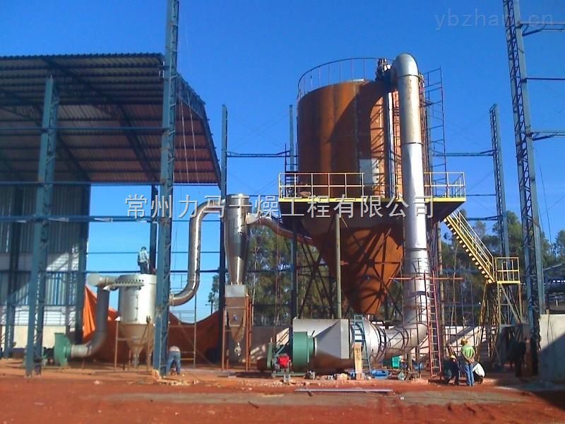 LPG-100喷雾干燥塔附加条款