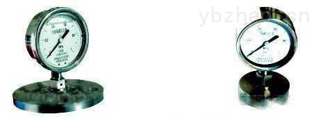 安徽天康YPF系列防腐膜片压力表