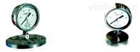 安徽天康YPF系列防腐膜片壓力表