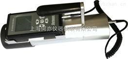 BG9512P型Xγ辐射剂量率仪