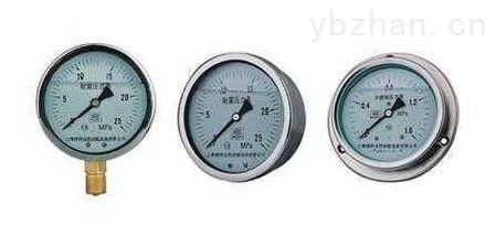 Y-153B不銹鋼壓力表