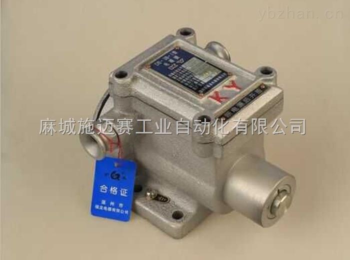 DS-30-I/DS-30-II 矿用防爆电磁锁