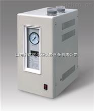 LDX-ZPH-SPN-500-高純度氮氣發生器/氮氣發生器