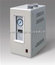 LDX-ZPH-SPN-300-高純度氮氣發生器/氮氣發生器