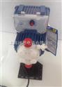 西科带低液位加药计量泵,意大利SEKO循环水阻垢剂加药泵AKL600