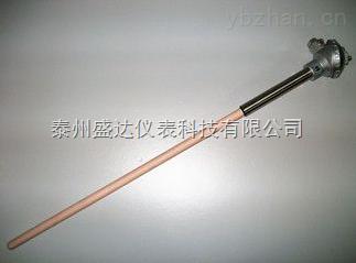 双铂铑热电偶 WRR2-101/131