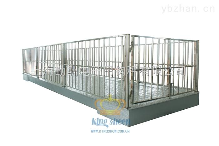 SCS-【供應】不銹鋼畜牧秤 動態稱重牲畜地磅