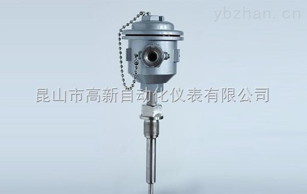 WZP-24S-防爆热电阻