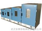 化工工业高温烘箱
