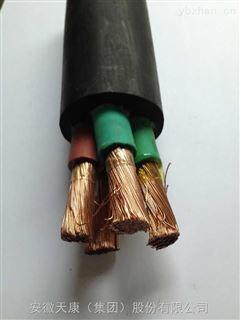 CVV  3*2.5聚氯乙烯绝缘和护套船用电力电缆