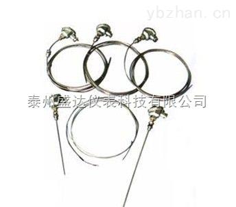 厂家直销手持式带笔套WRNK-191铠装热电偶