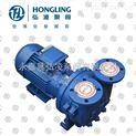 SKA20.60水環式真空泵