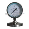 YTS-100耐酸压力表,耐腐蚀压力表