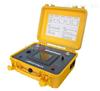 SR8900容性设备带电测试装置